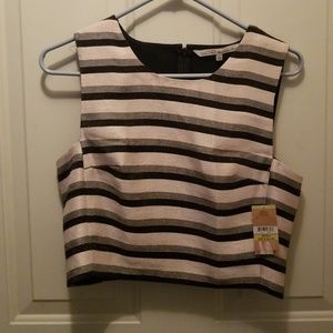 RACHEL Fitted Crop Top Size 4 Striped Shimmery